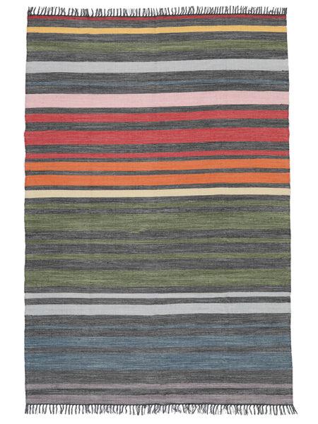 Rainbow Stripe - Harmaa Matto 160X230 Moderni Käsinkudottu Vaaleanharmaa/Tummanharmaa (Puuvilla, Intia)